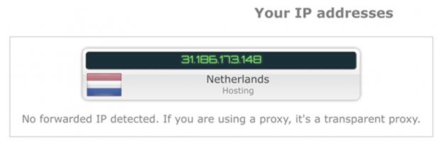 Goose VPN no WebRTC leak