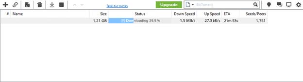 YourBitorrent Download Speed